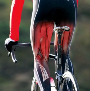 cycling physio