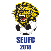Southern and Ettalong United Football Club